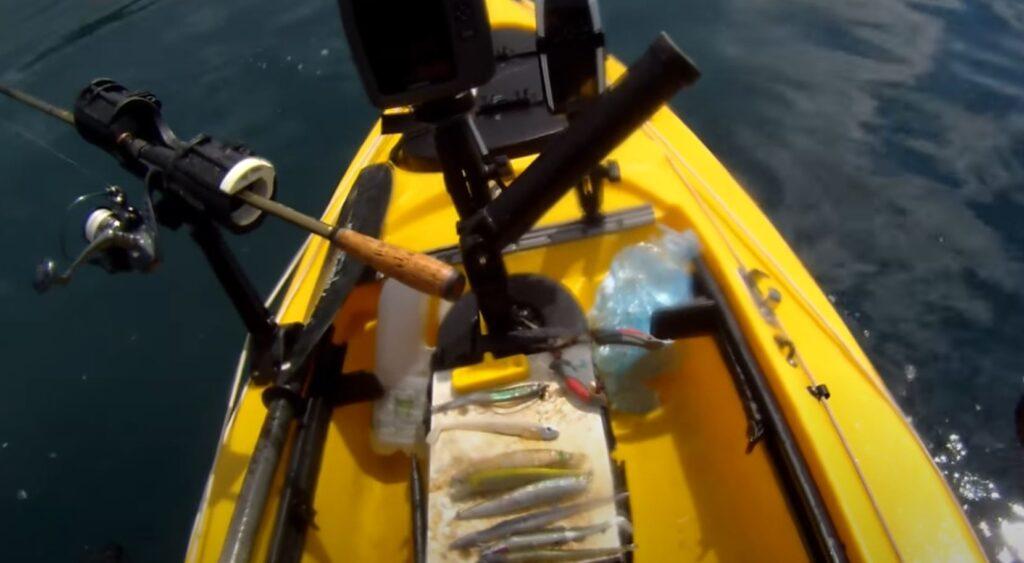 kayak bass